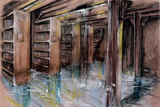 Flooded Library by kateyparr