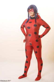 Ignis as Ladybug by Ignis03