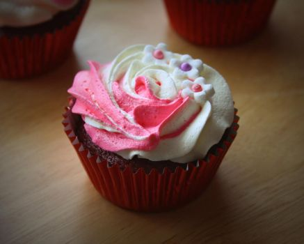 Cupcake Study in Natural Light by ImagesByAndrew