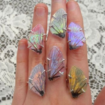 Fairy Wing Rings by KristenJarvisART