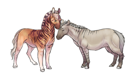 Quagga and Zebro by cheetahtrout