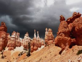 Bryce Canyon 1 by Necy
