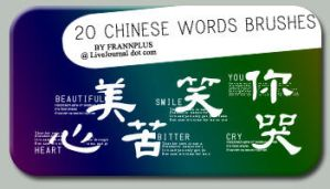 Chinese Words Brushes by frannplus