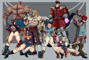 Street Fighter 30th: Shadaloo Elite. by vf02ss