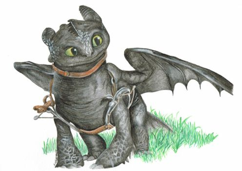 Where no one goes -  Toothless by HeroJamesStar