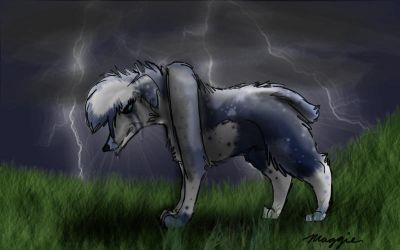 Rushed By The Storm by MagTehPapillon