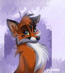 new icon by O-ruff