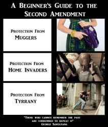 2nd Amendment Meme by ShoelaceMonster