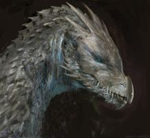 Dragon head study by Manzanedo
