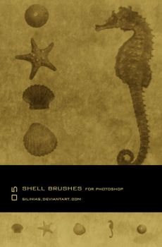 Shell Brushes PS - 02 by silinias