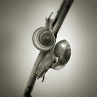 Unchained Melody by idyllis