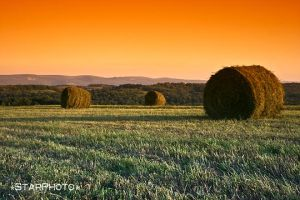 Calm of the Country by StarPhoto