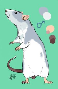 Rat Adoptable Auction Open by FAFs-adoptables