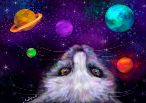 cat in space by LiCiK-A