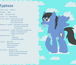 Typhoon Ponysona Reference Sheet by BlueFoxThom