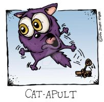 Cat-a-pult by stuartmcghee