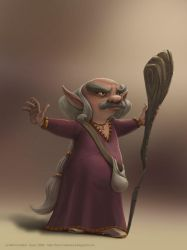 Lutin - Wise old Elf by clementmeriguet