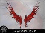 Icarus Wings by poserfan-stock