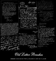 8 Handwritten letter Brushes by PumpkinPhotography