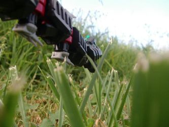 Head down among the grasses by PhantomSabre