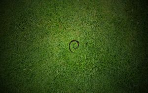 Debian Grass by hadret