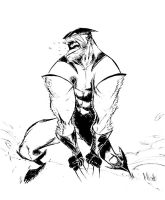 Pastross3 Wolverine by alessandromicelli