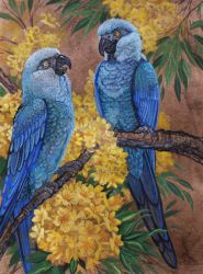 Spix Macaws  by HouseofChabrier