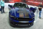 2013 Shelby GT 500 by JoshuaCordova