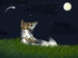 Night - trade by Axxread