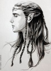 A Noldor Elf lord by evankart