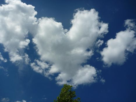 Heart in the Sky by AnUnimaginaryKid