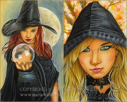 Sketchbook 49 - Coven by MJWilliam