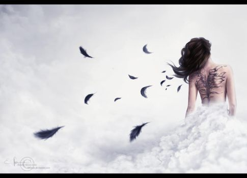 And I shall spread my blackened wings by Shenim