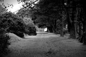 Swansea park by ArtCondition