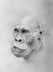 Mutant Gorilla by edu-yoshida