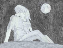 Moonlit Couple by HedHuntr