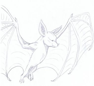Not Quite Daily Sketch 27 - Bat by YikYik
