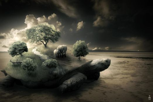 Surreal Turtle Image by tashamille