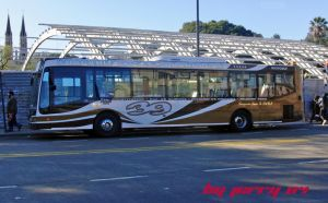 Nuovobus linea 39 by jerry04