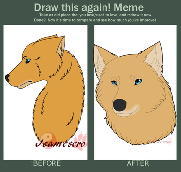 Draw this again meme - Meir by Jeamesero