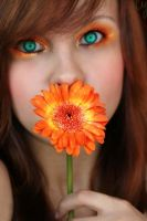 orange flower by ceciliay