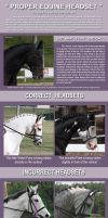 Horse Tutorial: Headset by blondemare