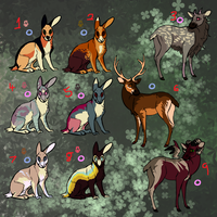 Spring point adopts - cheap by Zincwolf