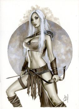 Warrior Elf - Kato Bw759 by AlexMirandaArt
