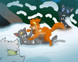 This kit will be LEADER! - Sunstar: Warrior Cats by pinkbunnygirl43