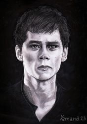 Dylan O'Brien by Yana15