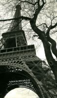 eiffel tower by max702