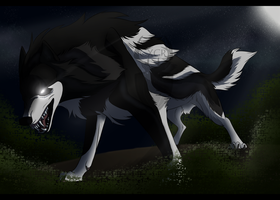 WoLF: Confidence by CXCR