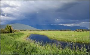 Marsh Channel by kootenayphotos