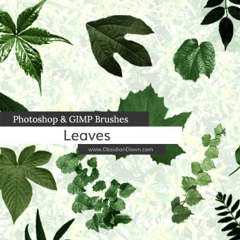 Leaves Photoshop and GIMP Brushes by redheadstock